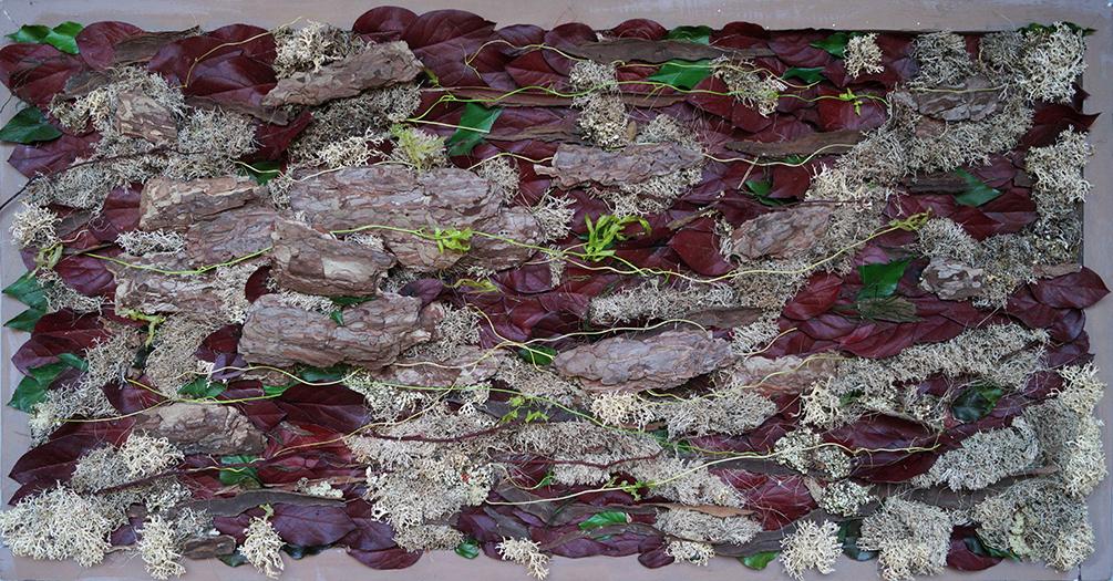 Tableau en écorces de pin, lichen et feuilles salal