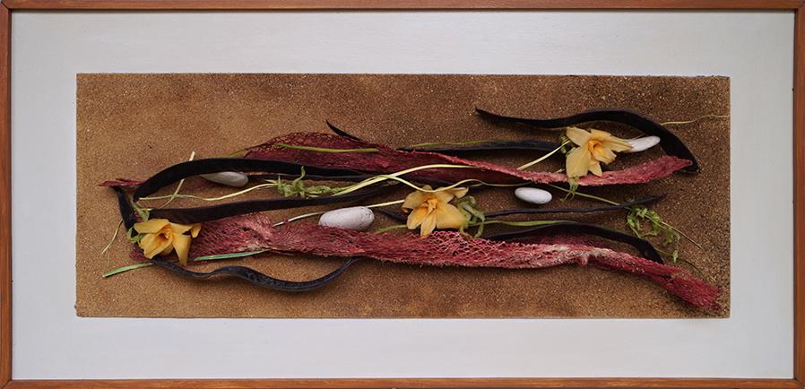 Tableau d'orchidées hasardeuses, catalpa, squelette végétal, cailloux et algues sur sable
